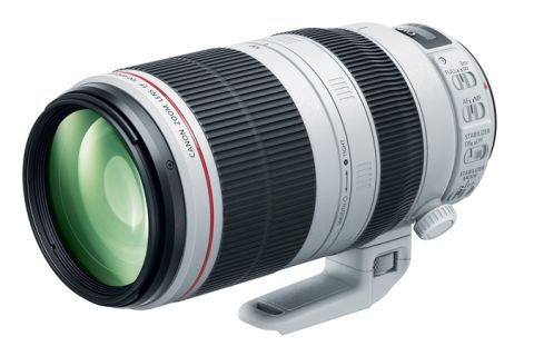 EF 100-400mm F4.5-5.6L IS II USM